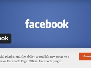 Facebookコメントを設置しよう